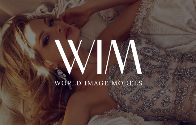 World Image Models